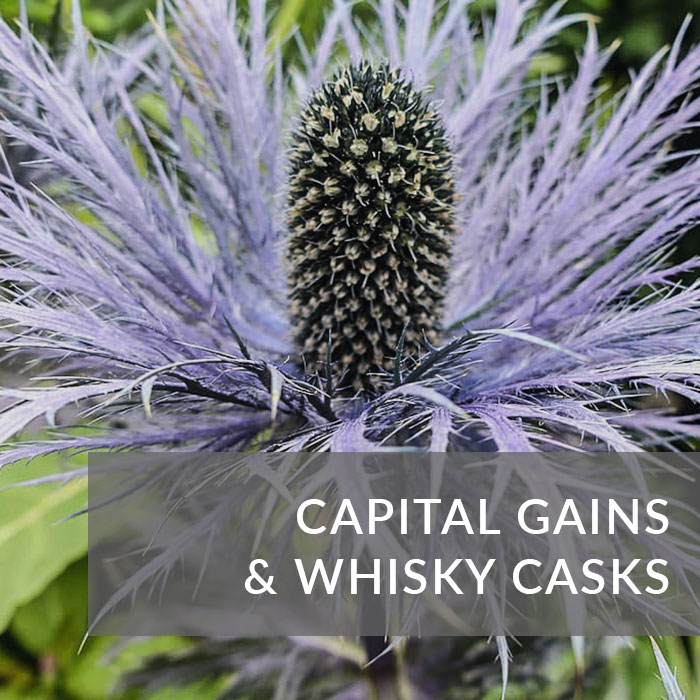 Button to navigate to the blog about capital gains and whisky casks