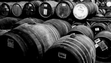 whisky cask return on investment