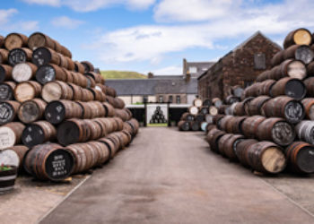 Invest strategically: Buy the next Macallan Whisky