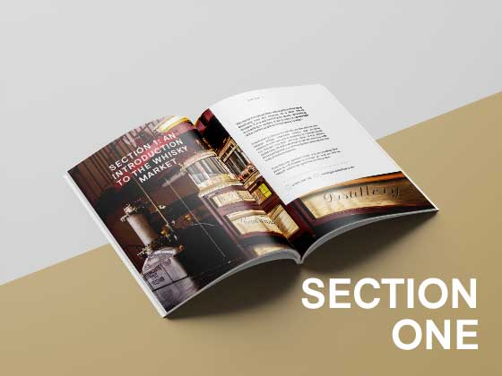 Section-One-Whisky-Investment-Guieds
